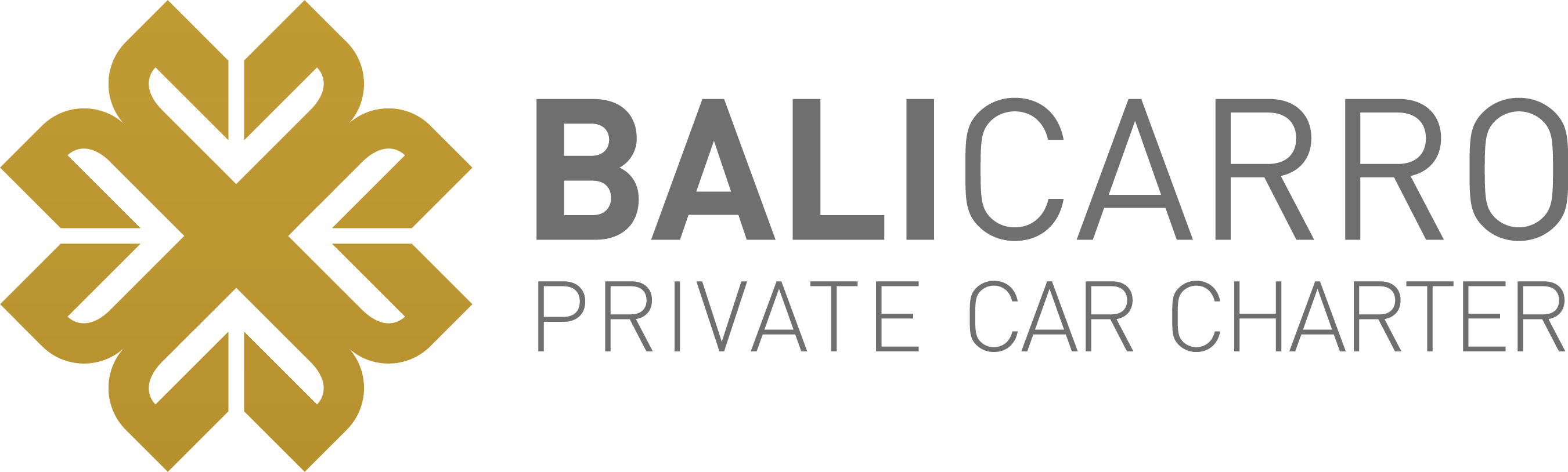 BALICARRO-private car charter in BALI